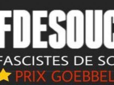 Détournement logo Fdesouche
