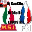 Comparaison logos MSI-FN