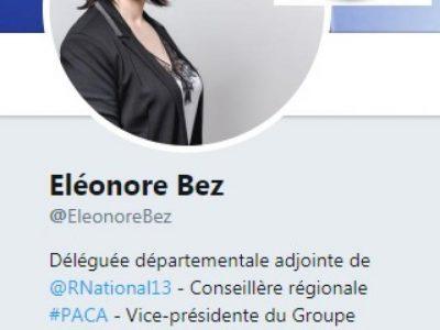 CV d'Eléonore bez
